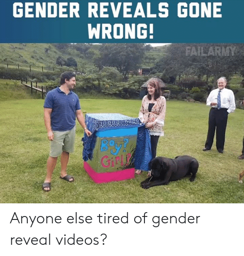 Memes, Videos, and 🤖: GENDER REVEALS GONE  WRONG!  Giny Anyone else tired of gender reveal videos?