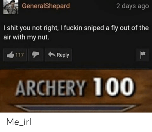 I Shit: GeneralShepard  2 days ago  I shit you not right, I fuckin sniped a fly out of the  air with my nut.  Reply  117  ARCHERY 100 Me_irl