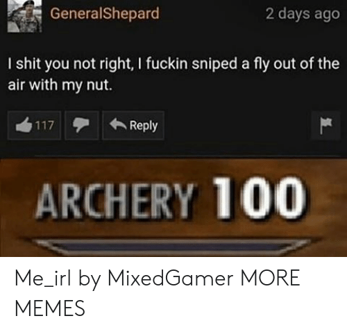 I Shit: GeneralShepard  2 days ago  I shit you not right, I fuckin sniped a fly out of the  air with my nut.  Reply  117  ARCHERY 100 Me_irl by MixedGamer MORE MEMES