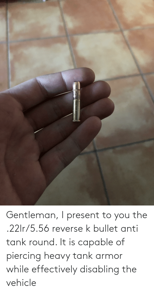 Bullet: Gentleman, I present to you the .22lr/5.56 reverse k bullet anti tank round. It is capable of piercing heavy tank armor while effectively disabling the vehicle