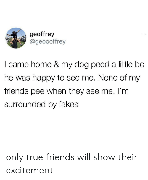 Will Show: geoffrey  @geoooffrey  I came home & my dog peed a little bc  he was happy to see me. None of my  friends pee when they see me. I'm  surrounded by fakes only true friends will show their excitement