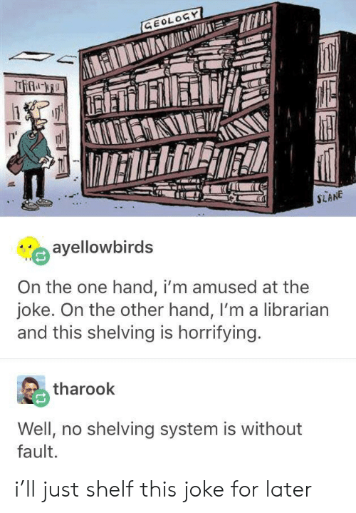librarian: GEOLOGY  IETERRET  SLANE  ayellowbirds  On the one hand, i'm amused at the  joke. On the other hand, I'm a librarian  and this shelving is horrifying.  tharook  Well, no shelving system is without  fault. i'll just shelf this joke for later