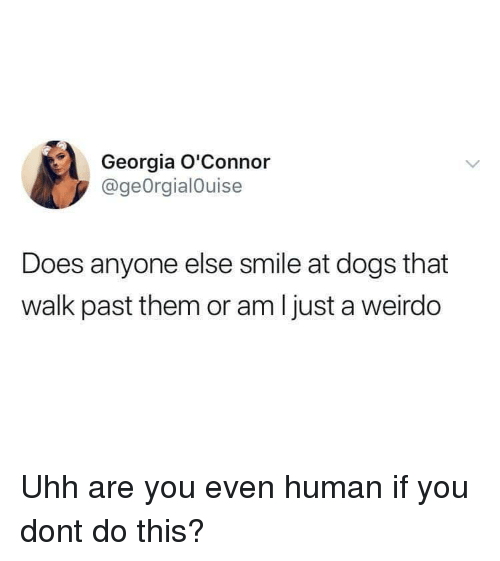 Dogs, Georgia, and Smile: Georgia O'Connor  @geOrgialOuise  Does anyone else smile at dogs that  walk past them or am Ijust a weirdo Uhh are you even human if you dont do this?