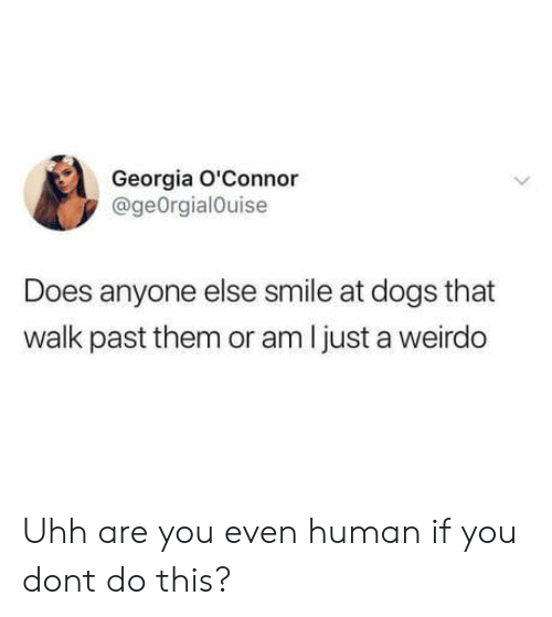 Dogs, Georgia, and Smile: Georgia O'Connor  @geOrgialOuise  Does anyone else smile at dogs that  walk past them or am l just a weirdo Uhh are you even human if you dont do this?