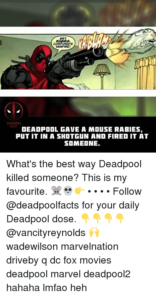 Foxe: GET  CORPORATE  VAMPIRE  RCT  DEAOPOOL GAVE A MOuSE RABIES,  PUT IT IN A SHOTGUN AND FIRED IT AT  SOMEONE. What's the best way Deadpool killed someone? This is my favourite. 🐭💀👉 • • • • Follow @deadpoolfacts for your daily Deadpool dose. 👇👇👇👇 @vancityreynolds 🙌 wadewilson marvelnation driveby q dc fox movies deadpool marvel deadpool2 hahaha lmfao heh