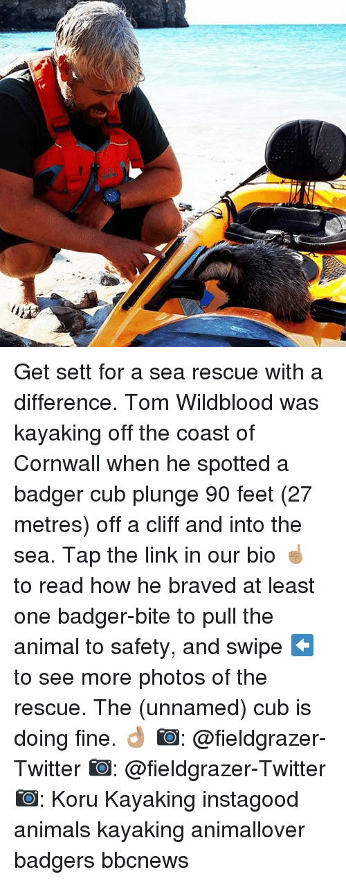 Kayaking: Get sett for a sea rescue with a difference. Tom Wildblood was kayaking off the coast of Cornwall when he spotted a badger cub plunge 90 feet (27 metres) off a cliff and into the sea. Tap the link in our bio ☝🏽 to read how he braved at least one badger-bite to pull the animal to safety, and swipe ⬅️ to see more photos of the rescue. The (unnamed) cub is doing fine. 👌🏽 📷: @fieldgrazer-Twitter 📷: @fieldgrazer-Twitter 📷: Koru Kayaking instagood animals kayaking animallover badgers bbcnews