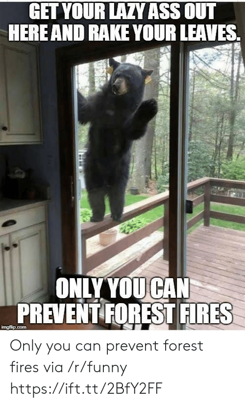 rake: GET YOURLAZYASS OUT  HERE AND RAKE YOUR LEAVES.  ONLYYOUCAN  PREVENT FOREST FIRES Only you can prevent forest fires via /r/funny https://ift.tt/2BfY2FF
