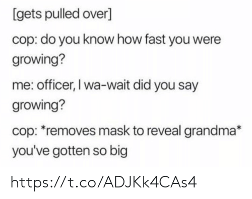 did-you-say: [gets pulled over]  cop: do you know how fast you were  growing?  me: officer, I wa-wait did you say  growing?  cop: removes mask to reveal grandma*  you've gotten so big https://t.co/ADJKk4CAs4