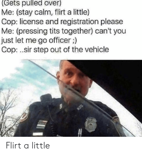 Tits, Step, and Cop: (Gets pulled over)  Me: (stay calm, flirt a little)  Cop: license and registration please  Me: (pressing tits together) can't you  just let me go officer;)  Cop: .sir step out of the vehicle Flirt a little