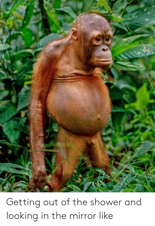 Shower, Mirror, and Looking: Getting out of the shower and looking in the mirror like