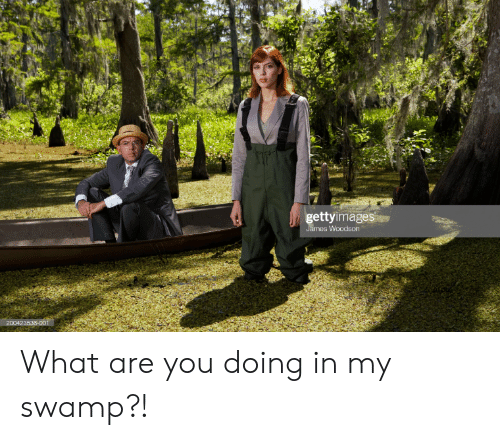 James, You, and Swamp: gettyimages  James Woodson  200423538-001 What are you doing in my swamp?!