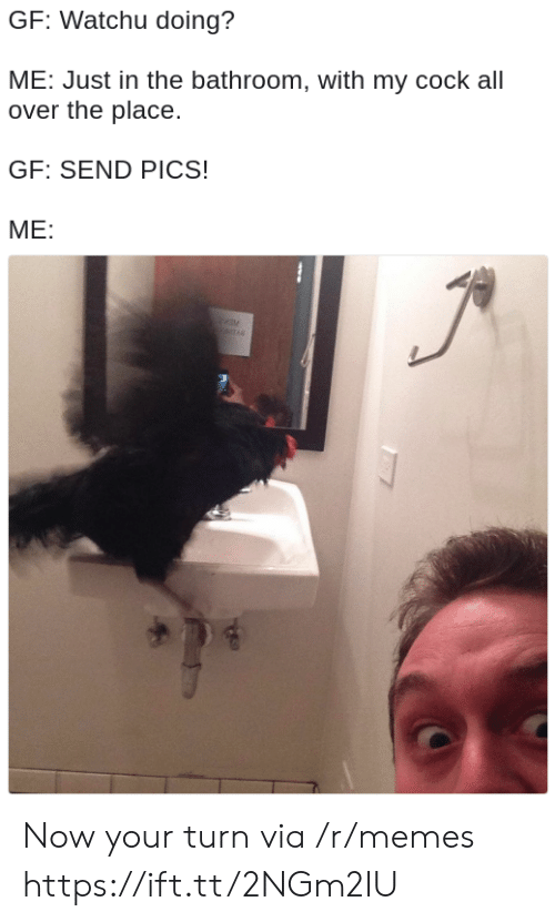 Memes, Via, and Pics: GF: Watchu doing?  ME: Just in the bathroom, with my cock all  over the place.  GF: SEND PICS!  ME: Now your turn via /r/memes https://ift.tt/2NGm2IU
