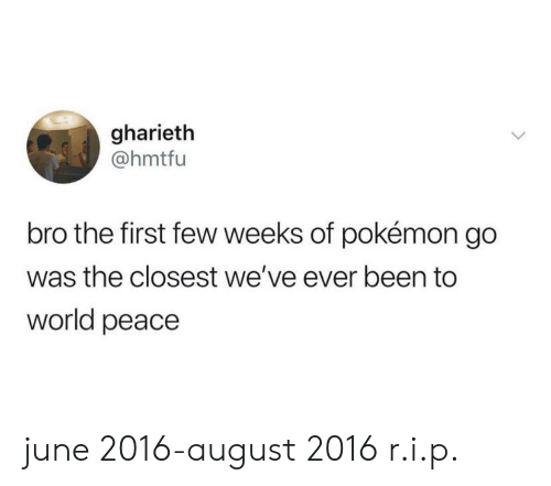 Pokemon, World, and Peace: gharieth  @hmtfu  bro the first few weeks of pokémon go  was the closest we've ever been to  world peace june 2016-august 2016 r.i.p.
