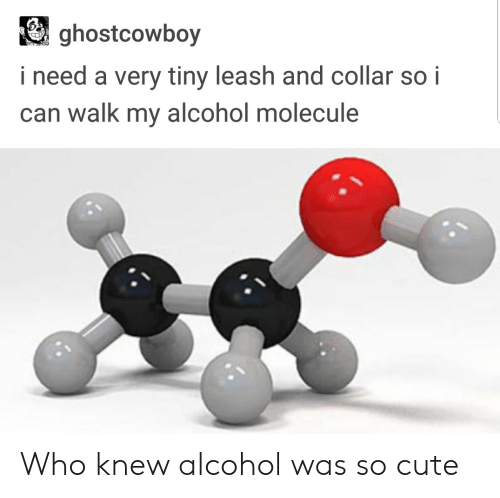 Leash And Collar: ghostcowboy  i need a very tiny leash and collar so i  can walk my alcohol molecule Who knew alcohol was so cute