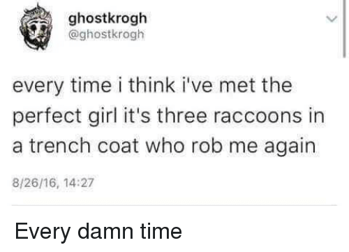 raccoons: ghostkrogh  @ghostkrogh  every time i think i've met the  perfect girl it's three raccoons in  a trench coat who rob me again  8/26/16, 14:27 Every damn time
