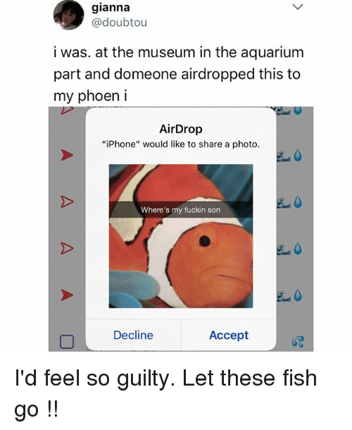"Iphone, Memes, and Aquarium: gianna  @doubtou  i was. at the museum in the aquarium  part and domeone airdropped this to  my phoen i  AirDrop  ""iPhone"" would like to share a photo  Where's my fuckin son  Decline  Accept I'd feel so guilty. Let these fish go !!"