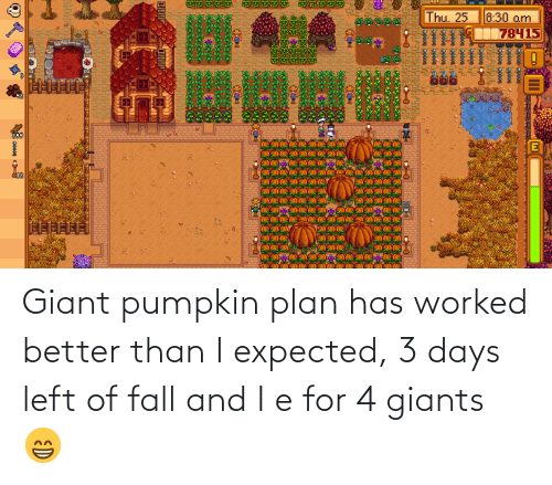 Pumpkin: Giant pumpkin plan has worked better than I expected, 3 days left of fall and I e for 4 giants 😁