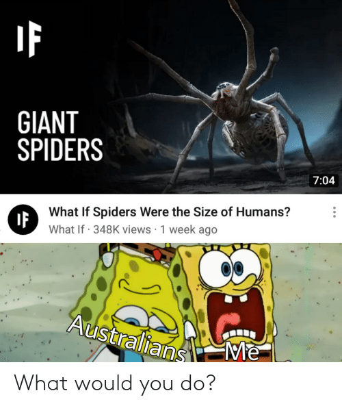 Giant: GIANT  SPIDERS  7:04  What If Spiders Were the Size of Humans?  IF  What If · 348K views · 1 week ago  Australians  Me What would you do?