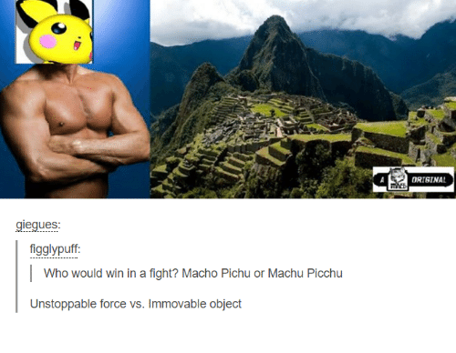 machu picchu: giegues  figglypuff:  I Who would win in a fight? Macho Pichu or Machu Picchu  Unstoppable force vs. Immovable object  A ORIGINAL