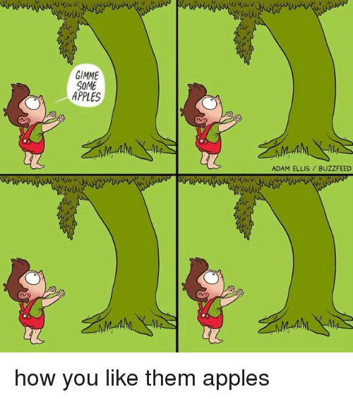 Adamated: GIMME  SOME  APPLES  ADAM ELLIS BUZZFEED how you like them apples