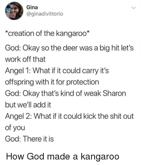gina: Gina  @ginadivittorio  *creation of the kangaroo*  God: Okay so the deer was a big hit let's  work off that  Angel 1: What if it could carry it's  offspring with it for protection  God: Okay that's kind of weak Sharon  but we'll add it  Angel 2: What if it could kick the shit out  of you  God: There it is How God made a kangaroo