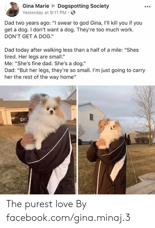 "gina: Gina MarieDogspotting Society  Yesterday at 9:11 PM  Dad two years ago: ""I swear to god Gina, I'll kill you if you  get a dog. I don't want a dog. They're too much work.  DON'T GET A DOG.""  Dad today after walking less than a half of a mile: ""Shes  tired. Her legs are small""  Me: ""She's fine dad. She's a dog.""  Dad: ""But her legs, they're so small. I'm just going to carry  her the rest of the way home"" The purest love  By facebook.com/gina.minaj.3"