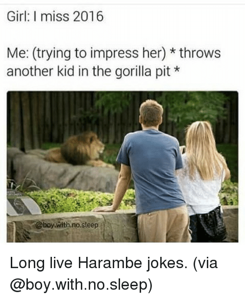 Haramber: Girl: I miss 2016  Me: (trying to impress her) throws  another kid in the gorilla pit  @boy with no steep Long live Harambe jokes. (via @boy.with.no.sleep)