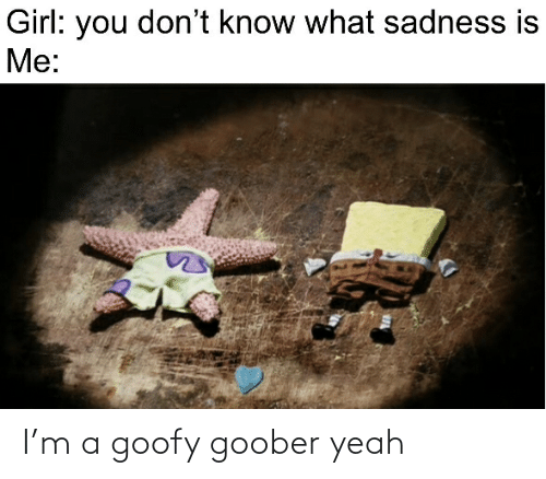 goofy goober: Girl: you don't know what sadness is  Me: I'm a goofy goober yeah