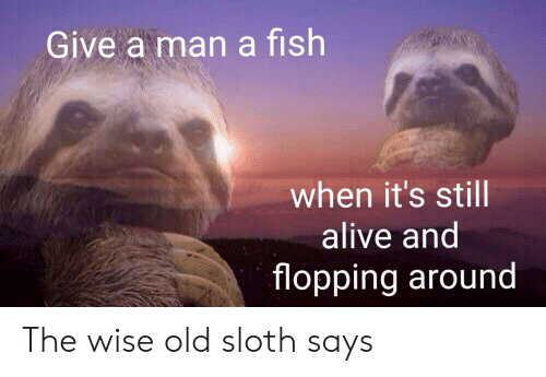 Alive, Reddit, and Fish: Give a man a fish  when it's still  alive and  flopping around The wise old sloth says