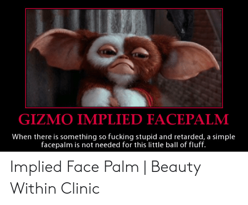 Facepalm, Fucking, and Retarded: GIZMO IMPLIED FACEPALM  When there is something so fucking stupid and retarded, a simple  facepalm is not needed for this little ball of fluff. Implied Face Palm | Beauty Within Clinic