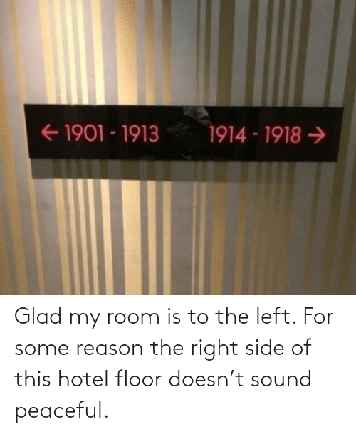 Hotel, Reason, and Sound: Glad my room is to the left. For some reason the right side of this hotel floor doesn't sound peaceful.