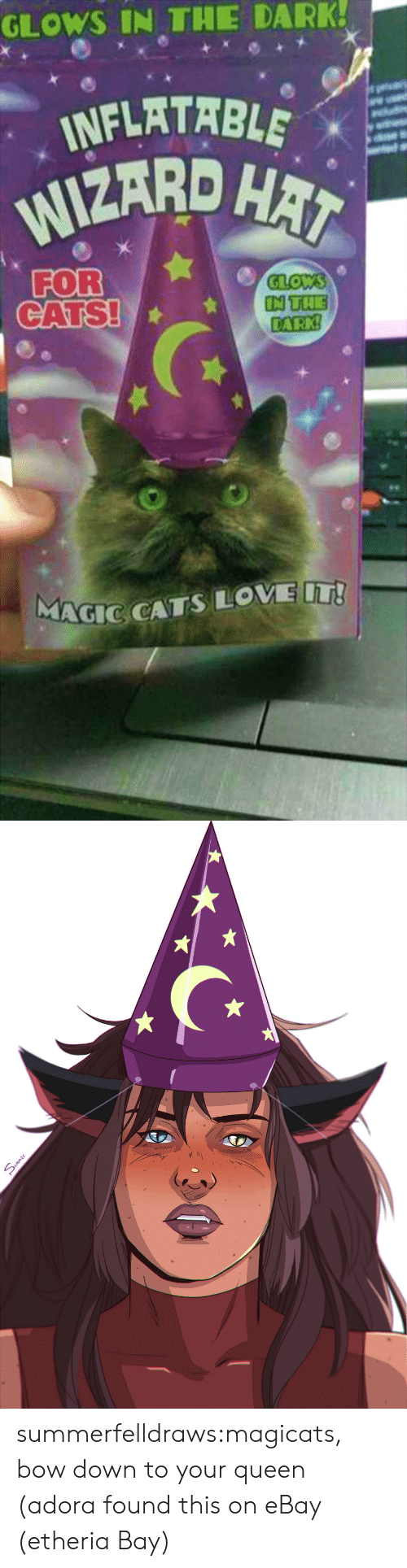 Cats, eBay, and Love: GLOWS IN THE DARK!  INFLATABLE  WIZARD HAT  FOR  CATS!  GLOWS  IN THE  DARK  MAGIC CATS LOVE T!   mme summerfelldraws:magicats, bow down to your queen (adora found this on eBay (etheria Bay)