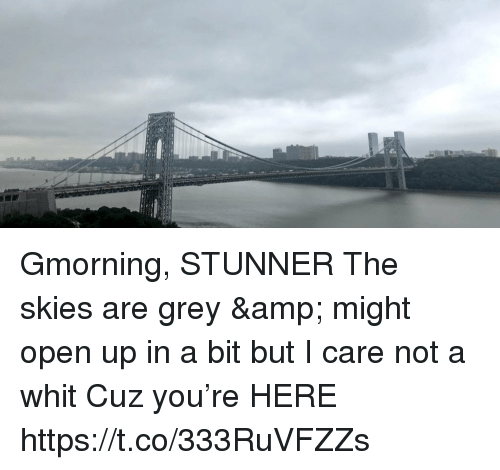 Memes, Grey, and 🤖: Gmorning, STUNNER  The skies are grey & might open up in a bit but I care not a whit  Cuz you're HERE https://t.co/333RuVFZZs