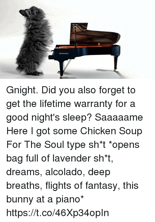 Memes, Chicken, and Good: Gnight.   Did you also forget to get the lifetime warranty for a good night's sleep? Saaaaame Here I got some Chicken Soup For The Soul type sh*t  *opens bag full of lavender sh*t, dreams, alcolado, deep breaths, flights of fantasy, this bunny at a piano* https://t.co/46Xp34opIn