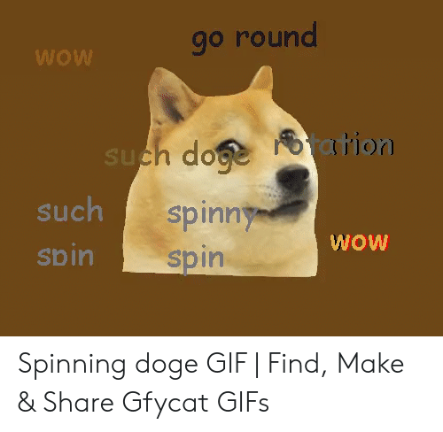 Doge Gif: go round  WOW  such do ation  such  spinny  spin  spin  MOM Spinning doge GIF   Find, Make & Share Gfycat GIFs