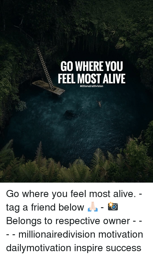 tag a friend: GO WHERE YOU  FEEL MOST ALIVE  MillionaireDivision Go where you feel most alive. - tag a friend below 🙏🏻 - 📸 Belongs to respective owner - - - - millionairedivision motivation dailymotivation inspire success