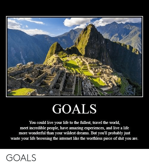 Goals, Internet, and Life: GOALS  You could live your life to the fullest, travel the world,  meet incredible people, have amazing experiences, and live a life  more wonderful than your wildest dreams. But you'll probably just  waste your life browsing the internet like the worthless piece of shit you are. GOALS