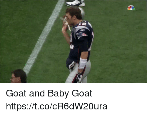 Tom Brady, Goat, and Baby: Goat and Baby Goat https://t.co/cR6dW20ura