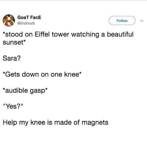 "Beautiful, Ironic, and Goat: GoaT FacE  @EndhooS  Follow  stood on Eiffel tower watching a beautiful  sunset*  Sara?  *Gets down on one knee*  audible gasp*  ""Yes?""  Help my knee is made of magnets"