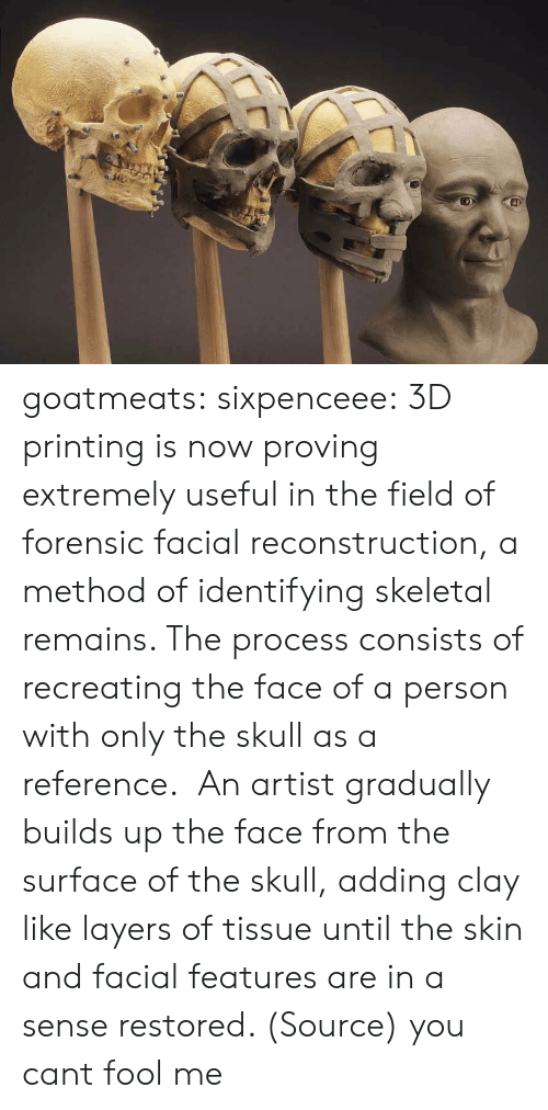 Tumblr, Blog, and Http: goatmeats:  sixpenceee:  3D printing is now proving extremely useful in the field of forensic facial reconstruction, a method of identifying skeletal remains. The process consists of recreating the face of a person with only the skull as a reference. An artist gradually builds up the face from the surface of the skull, adding clay like layers of tissue until the skin and facial features are in a sense restored. (Source)   you cant fool me