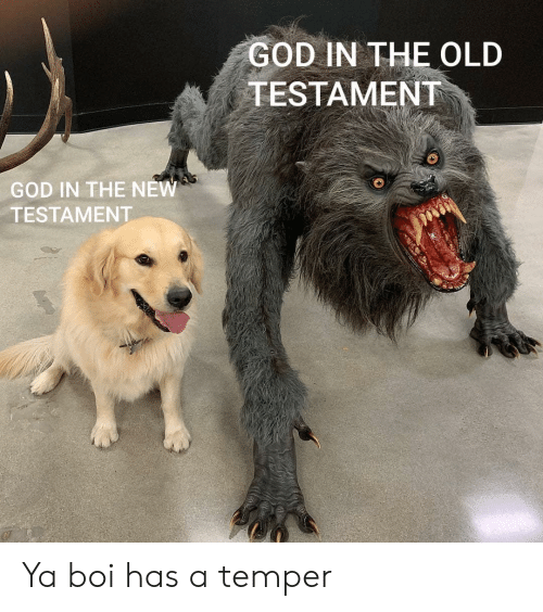 God, Old, and Boi: GOD IN THE OLD  TESTAMENT  GOD IN THE NEW  TESTAMENT Ya boi has a temper
