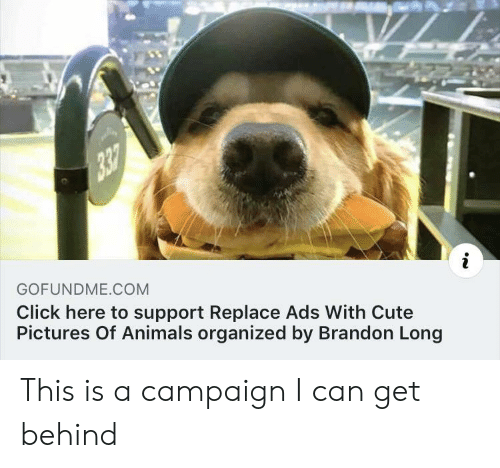 Gofundme: GOFUNDME COM  Click here to support Replace Ads With Cute  Pictures Of Animals organized by Brandon Long This is a campaign I can get behind