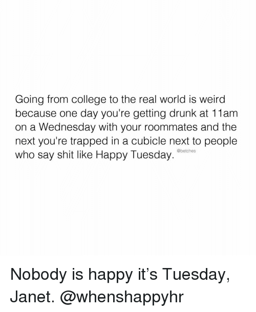 janet: Going from college to the real world is weird  because one day you're getting drunk at 11am  on a Wednesday with your roommates and the  next you're trapped in a cubicle next to people  who say shit like Happy Tuesday  @betches Nobody is happy it's Tuesday, Janet. @whenshappyhr