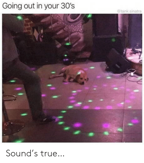 True, Tank, and Sinatra: Going out in your 30's  @ tank sinatra Sound's true…