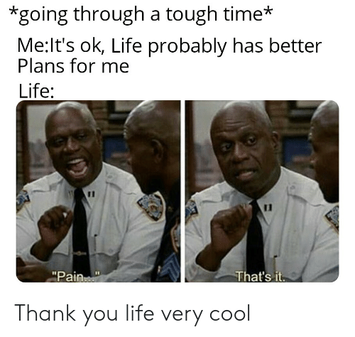 """Life, Reddit, and Thank You: *going through a tough time*  Me:It's ok, Life probably has better  Plans for me  Life:  11  That's it  """"Pain Thank you life very cool"""