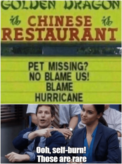 Hurricane: GOLDEN LRAGON  CHINESE  RESTAURANT  PET MISSING?  NO BLAME US!  BLAME  HURRICANE  Ooh, self-burn!  Those are rare