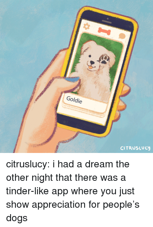 A Dream, Dogs, and Tinder: Goldie  CITRUSLucy citruslucy:   i had a dream the other night that there was a tinder-like app where you just show appreciation for people's dogs