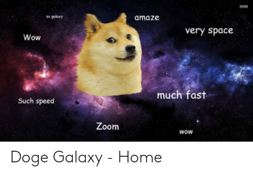 25 Best Memes About Doge Galaxy Doge Galaxy Memes