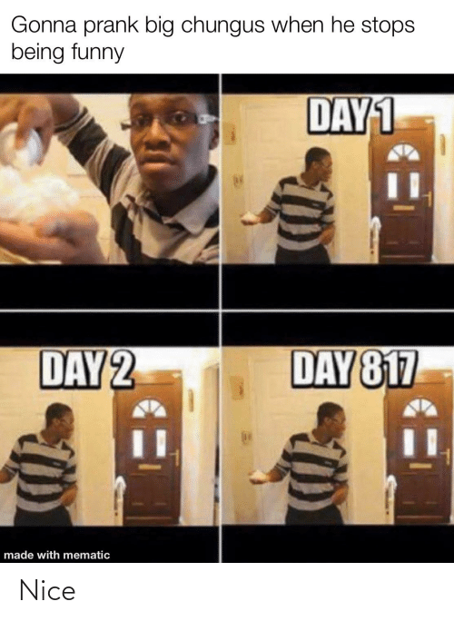 He Stops: Gonna prank big chungus when he stops  being funny  DAY1  DAY 2  DAY 817  made with mematic Nice