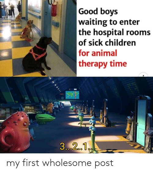 enter: Good boys  waiting to enter  the hospital rooms  of sick children  for animal  therapy time  3...2.1. my first wholesome post